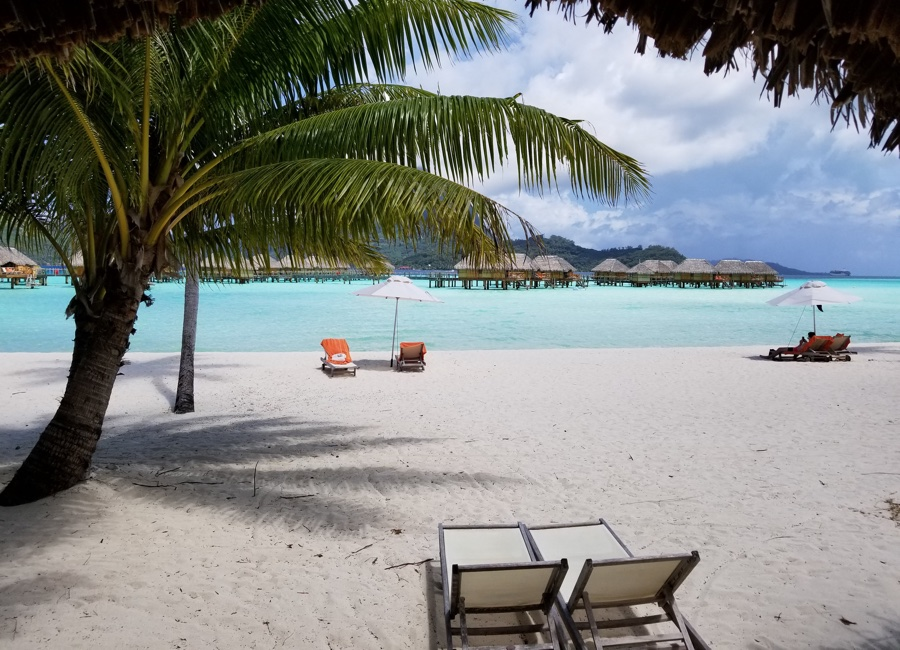 Tahiti Trip Planner | GeoLuxe | two chairs on a beach with a palm tree