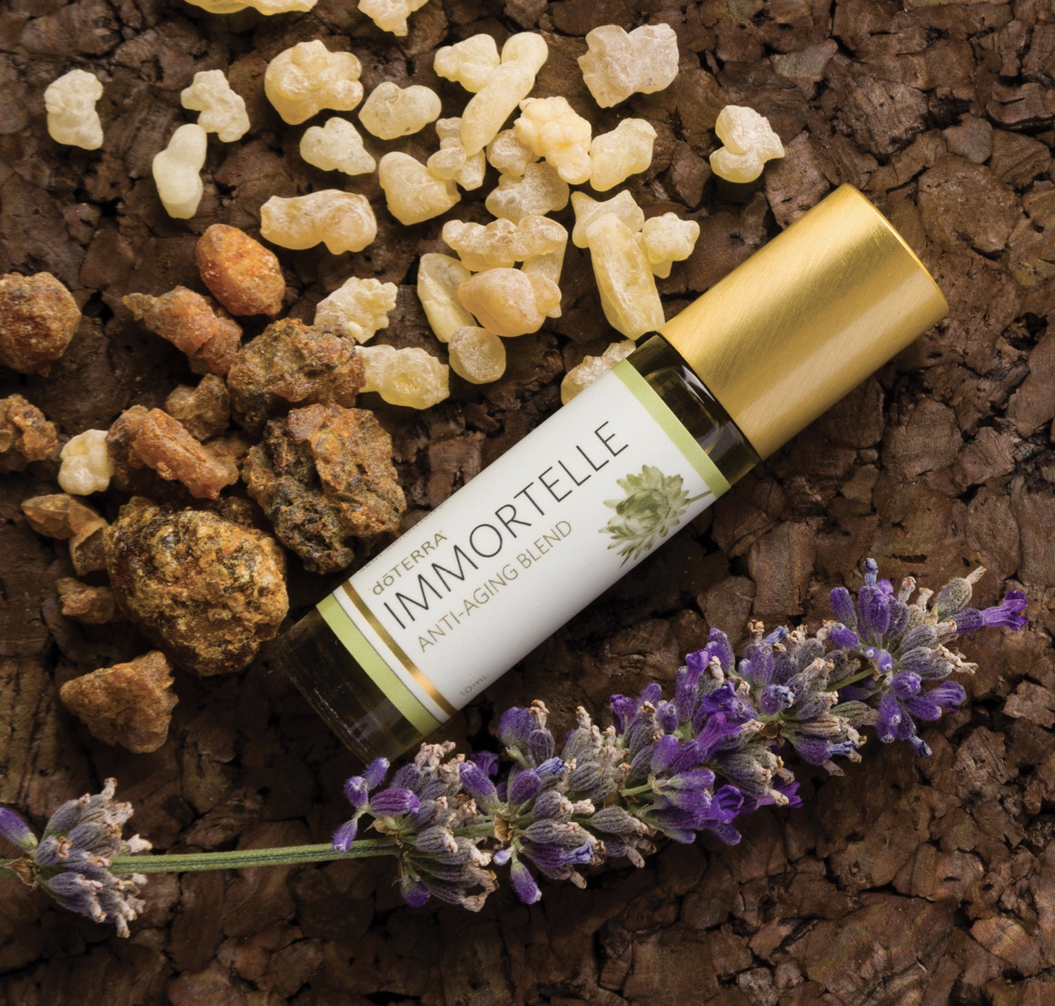 doTerra_Immortelle