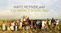 haiti, vetiver and co-impact sourcing
