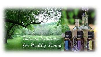 Natural-Solutions2.png