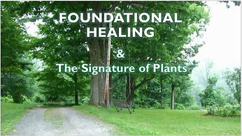 Foundational Healing and The Signature o