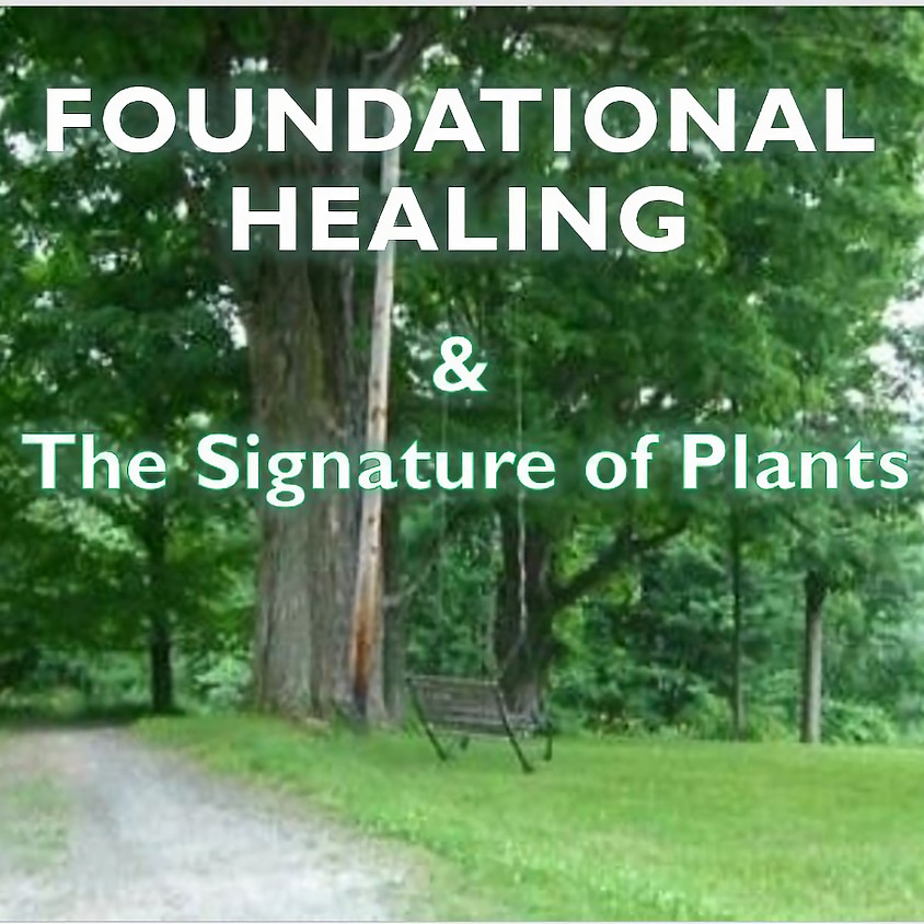 Foundational Healing - The Signature of Plants