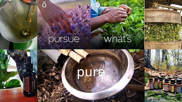 Pursue what's Pure.jpg