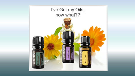 I've got my Oils, now what.jpg