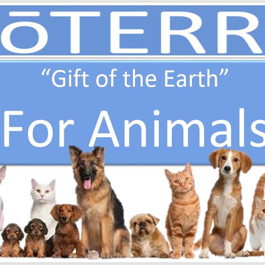 Essential Oils for Pets 7 PM EST