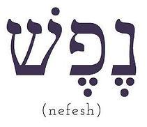 Nefesh logo.jpg