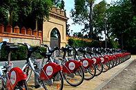 seville-cycles-2.jpg