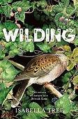 Wilding2-2.jpg