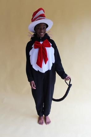Cat in The Hat - Dr Seuss