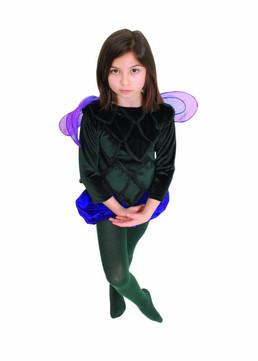 Knapweed/Thistle Fairy