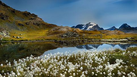 Col Rosset - Gran Paradiso