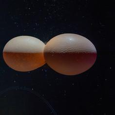 Eggstraterrestrial