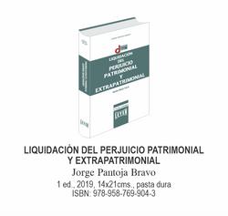 liquidacion_del_perjuicio_patrimonial_y_