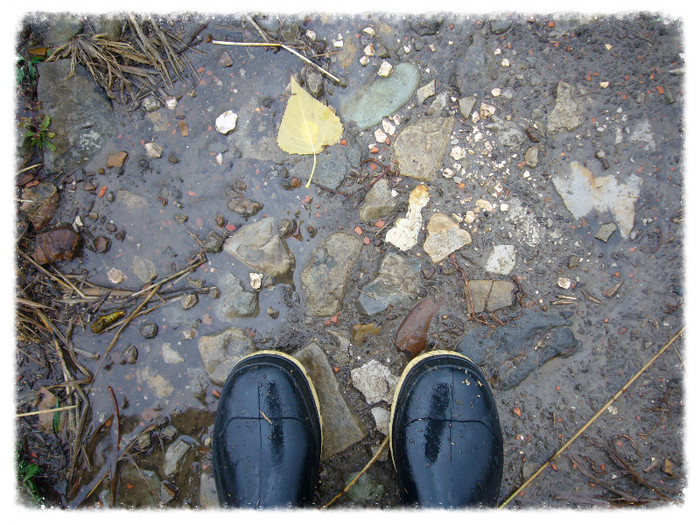 Wet Walks and Navel Gazing