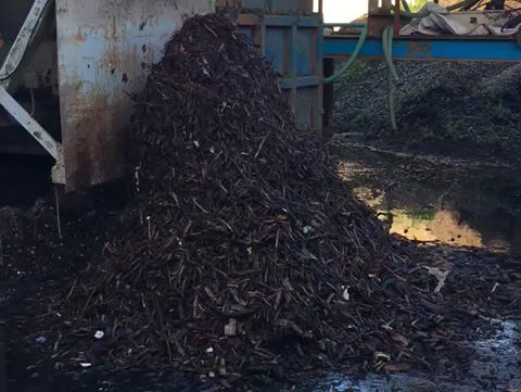 Compost clean-up