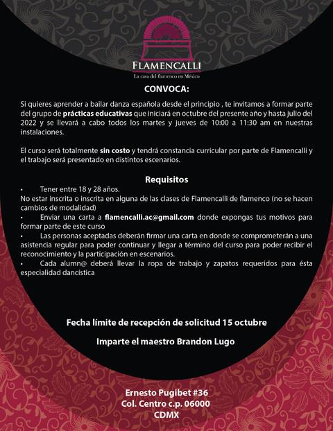 poster convocatoria brandon-01.jpg