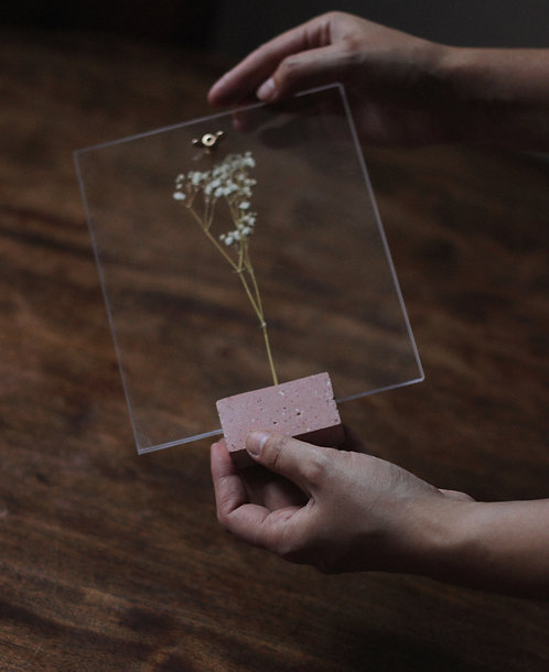 porta-retrato coral