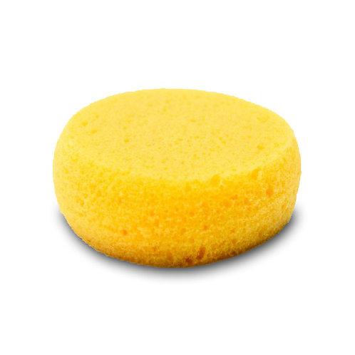 Throwing Sponge
