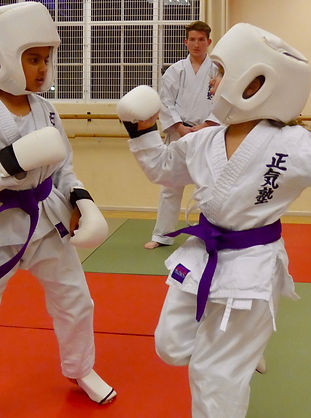 Female Karate protection gear