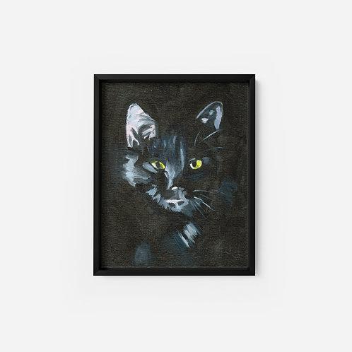 Black Cat - Oil - 9x12