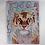 Thumbnail: White Tiger - Oil - 9x12