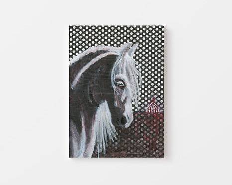 Circus Horse - Oil Painting - 8x10
