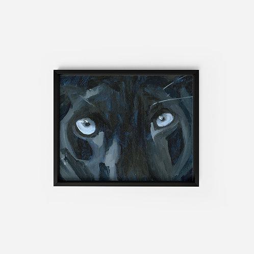 Panther Eyes - Oil - 5x7