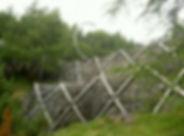 avaroc_0001_pict0898.jpg