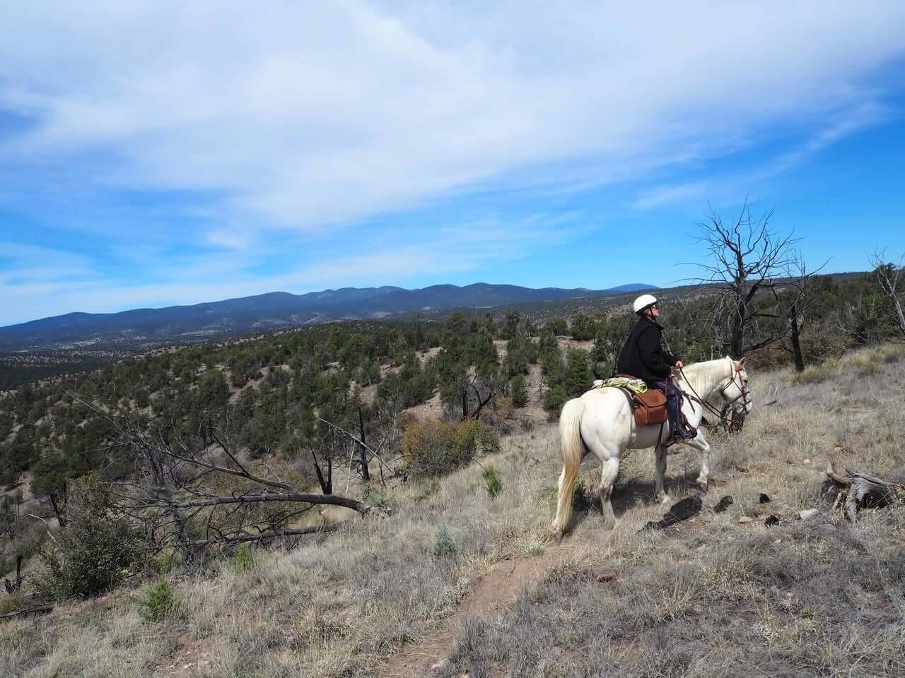 trail_riding_45-1.jpg