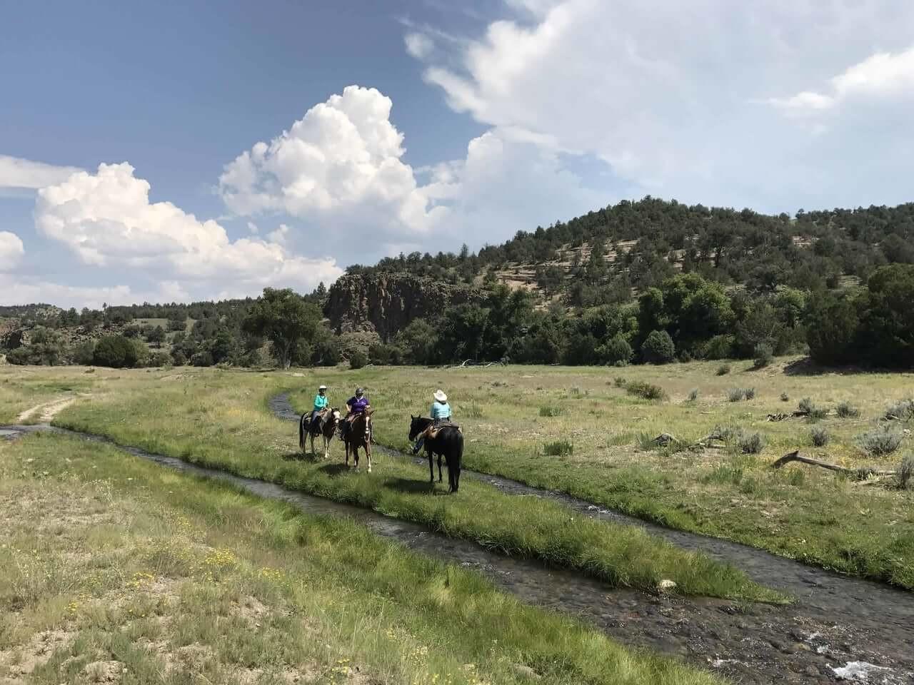 trail_riding_20-1.jpg