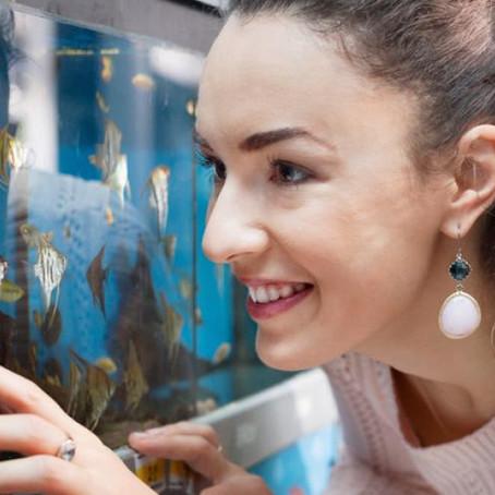 Qual é o tipo de vidro ideal para aquários?