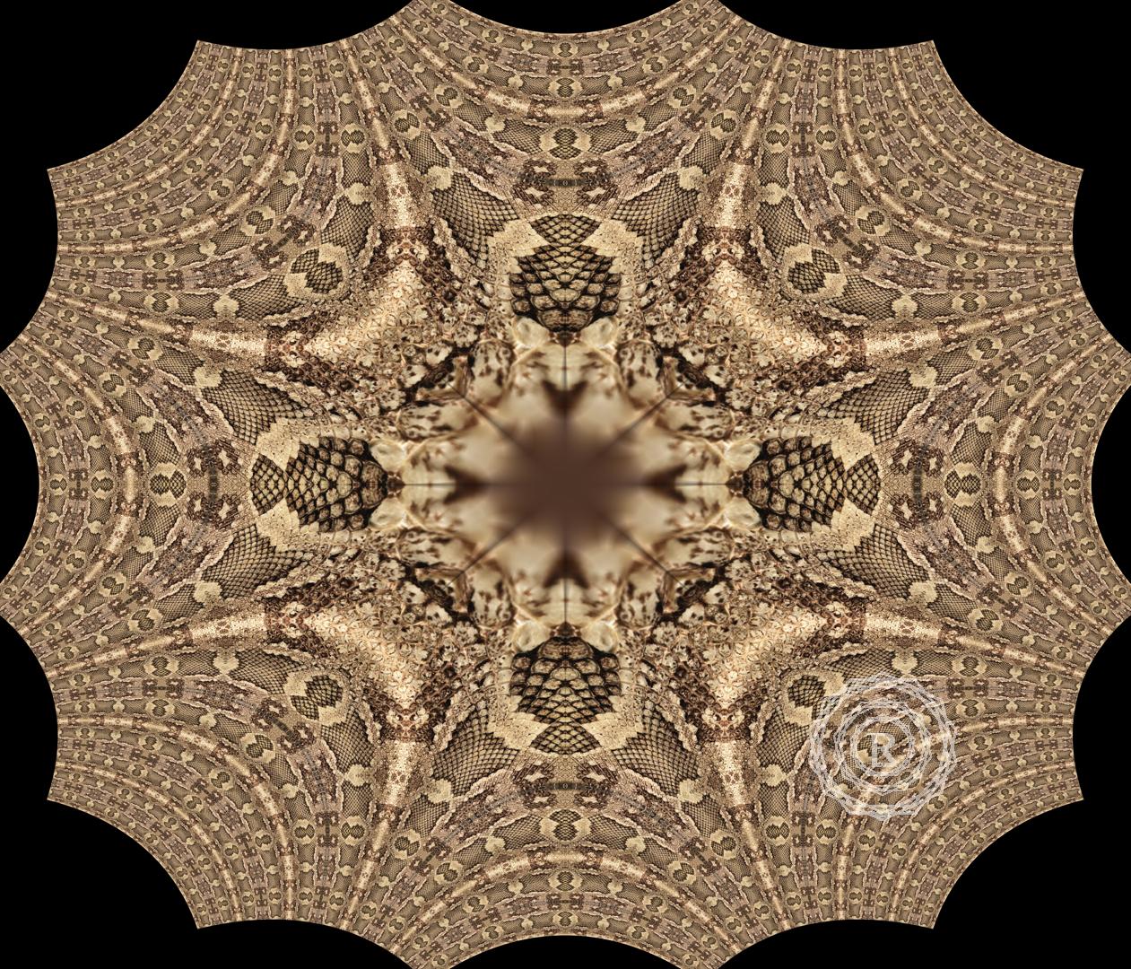 00074Resized_Mandalas_copyright_Recursia