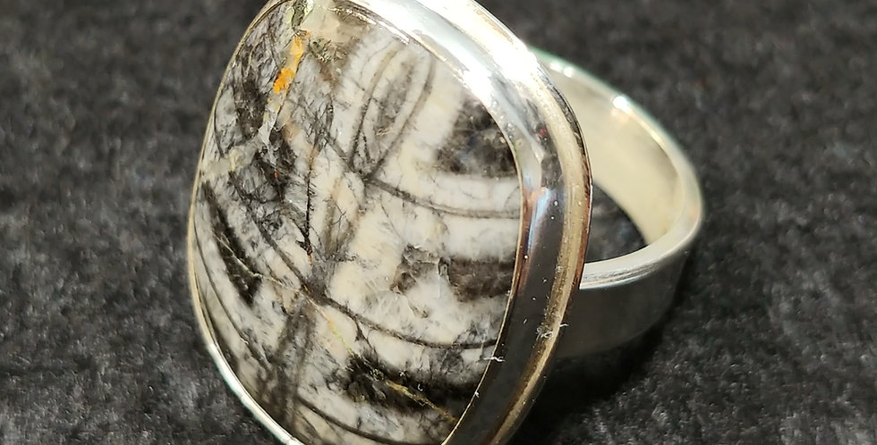 Orthoceras Ring