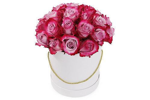 Пурпурные розы (25 шт.)