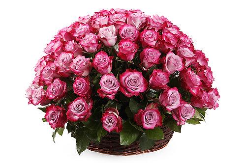 Пурпурные розы (101 шт.)