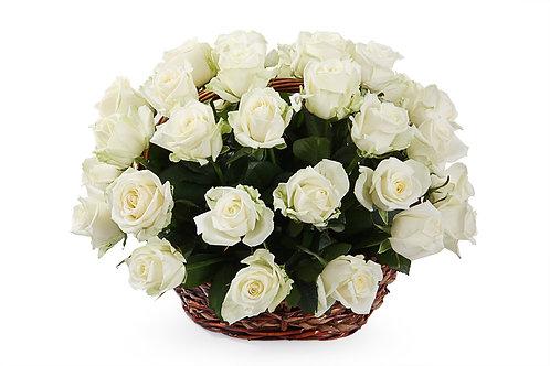 Белые розы (35 шт.)