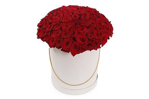 Красные розы (101 шт.)