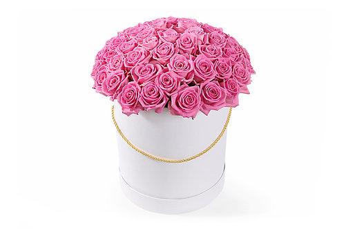 Розовые розы (51 шт.)