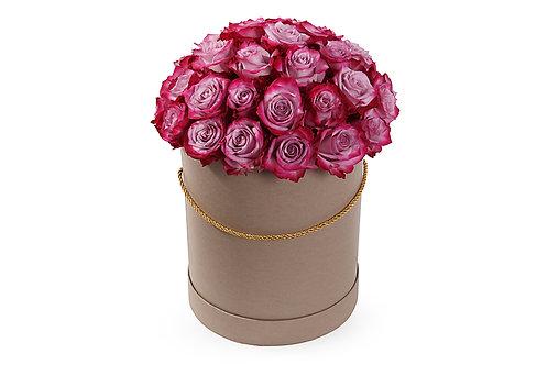 Пурпурные розы (35 шт.)