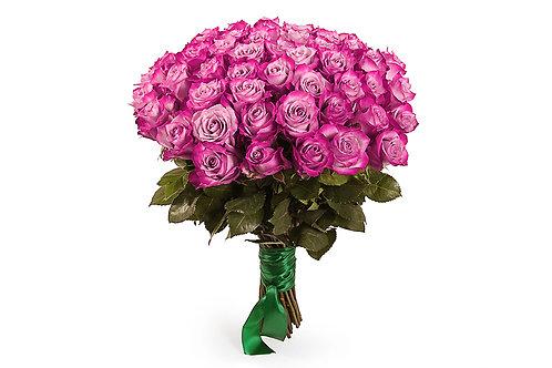 Пурпурные розы (51 шт.)