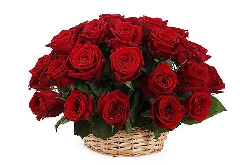 Красные розы (35 шт.)