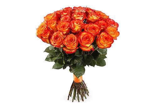 Оранжевые розы (25 шт.)