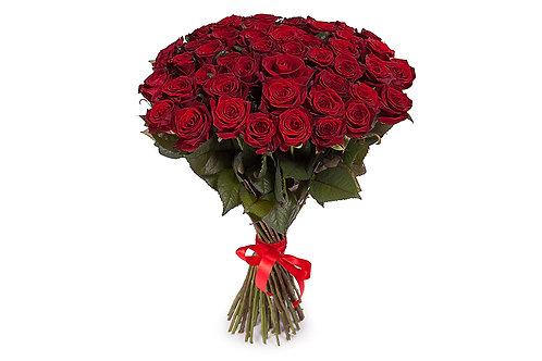 Красные розы (51 шт.)