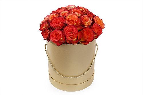 Оранжевые розы (35 шт.)