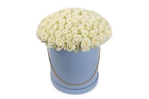 Белые розы (101 шт.)