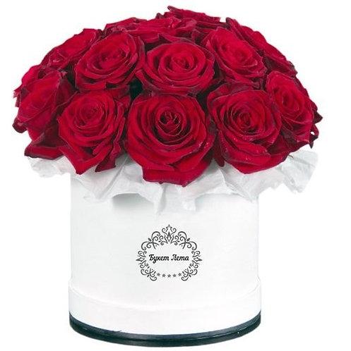 роза 21