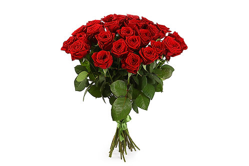 Красные розы (25 шт.)
