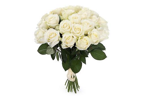 роза 25