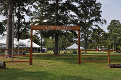 Houston company picnic,