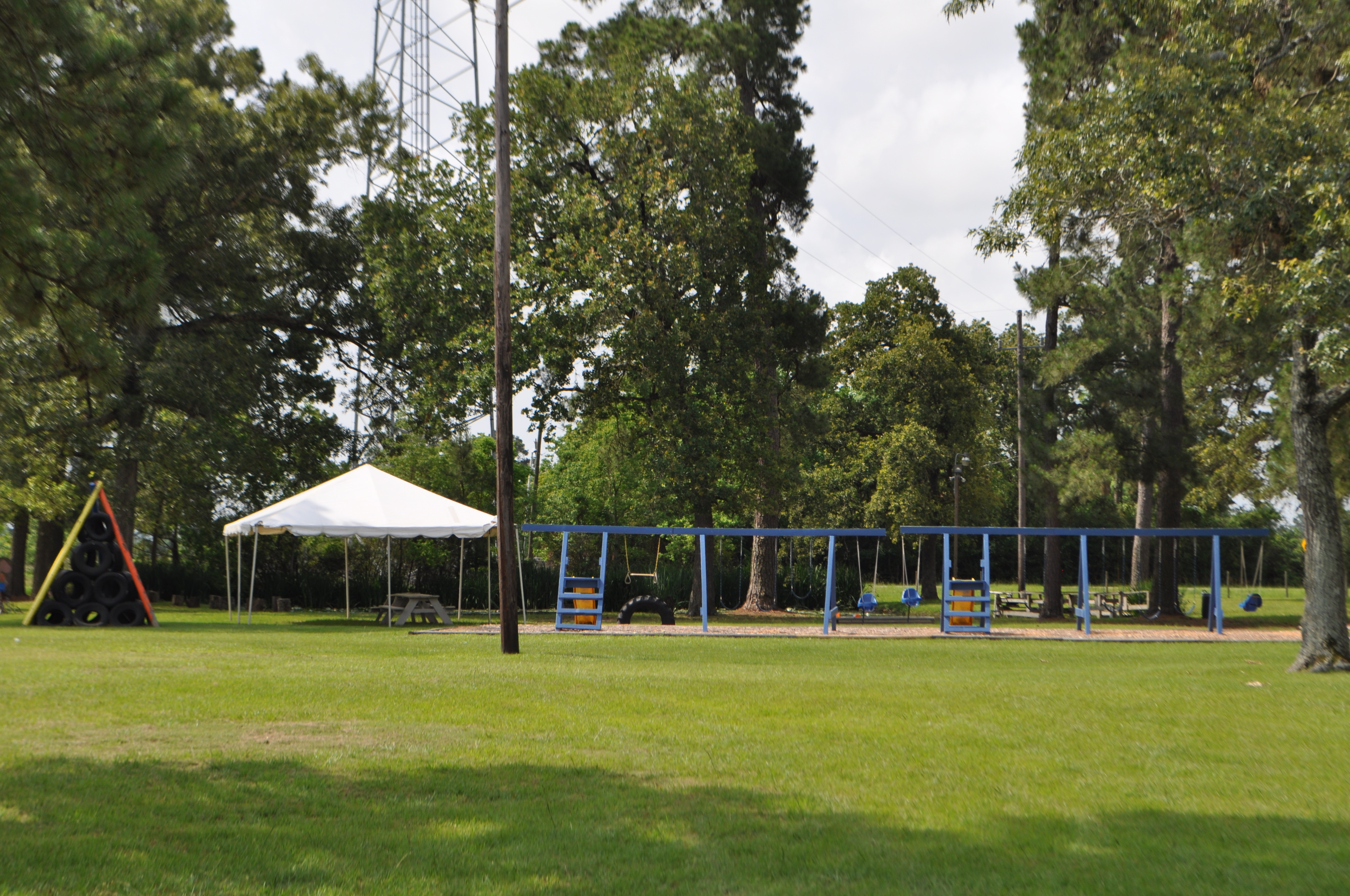 Woodlands Area Corporate Picnics,